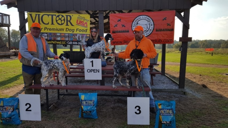Hoosier Trial Open Winners. Crystal Powell with Bella, Tim Powell with Lightning, Chris Miller with Lily