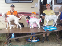 Pup winners MN 2008