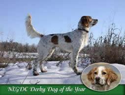 macderbydog